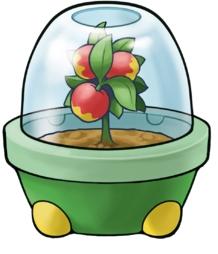 Berries Pokemon Heartgold Pokemon Soulsilver Items Wiki Guide Gamewise